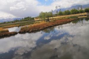 Canal across Shey Palace