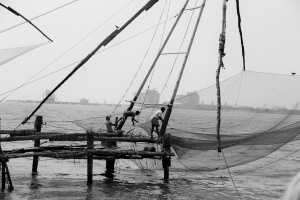 Chinese Fishing Net - First Glimpse