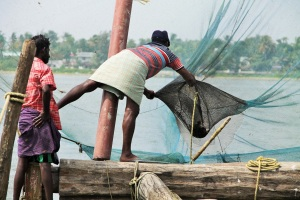 Scooping the catch